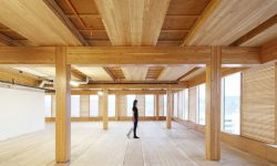 CLT: Sustainable building materials in Australia